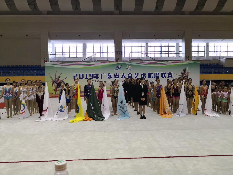 2019年广东省大众艺术体操联赛