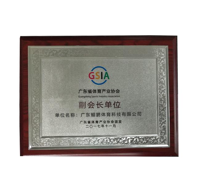 广东省体育产业协会副会长单位
