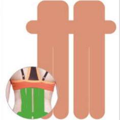李宁LI-NING 肌肉贴布肌贴胶带拉伤扭伤贴篮球健身运动护具弹性绷带胶布肌内效贴布 LQAL106-1-2